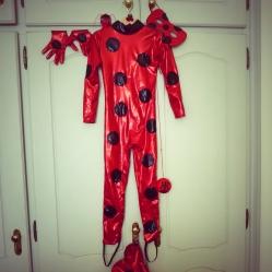 Ladybug 1 fato